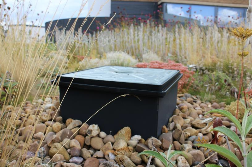 ABG blueroof restrictor chamber in biodiverse green roof areas