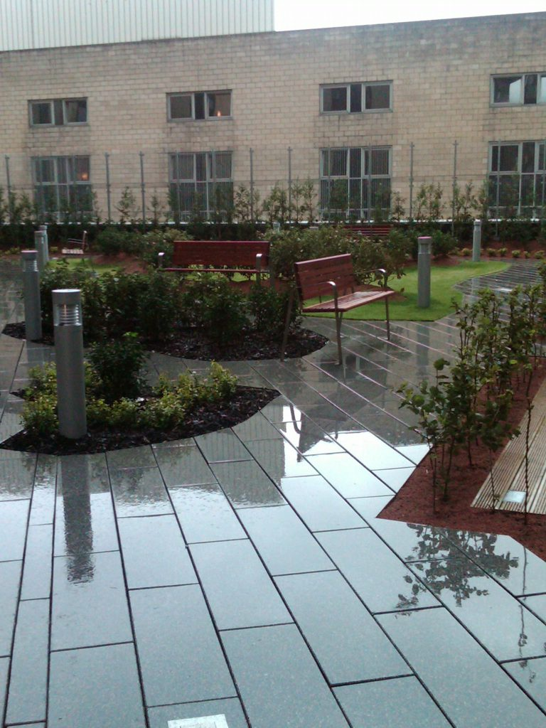 Extensive Amp Intensive Green Roof Installation Service