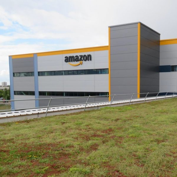 Green roof system installed for Amazon