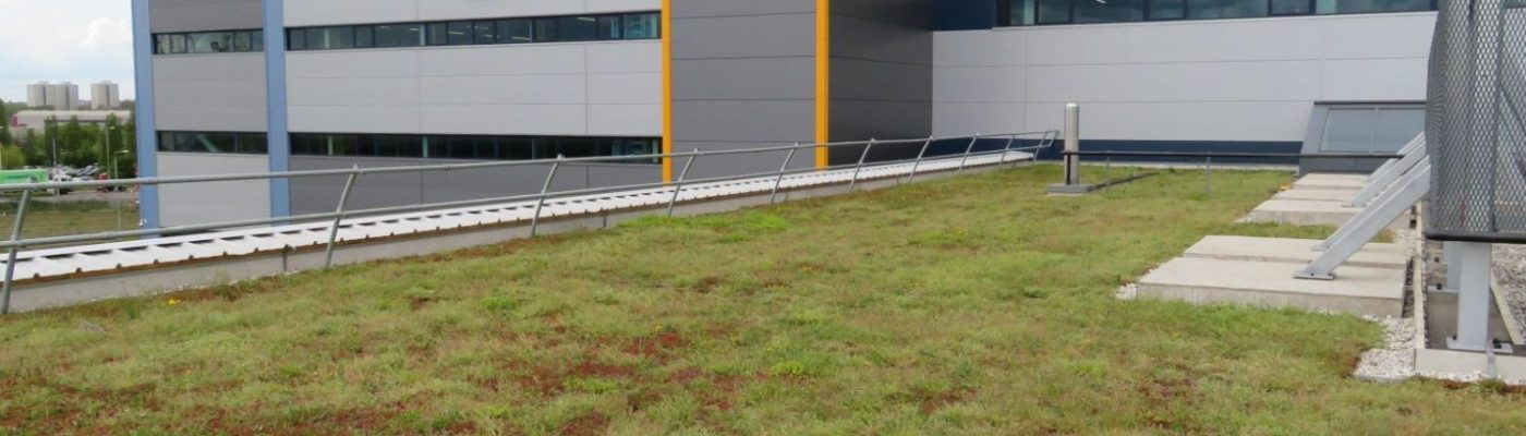 Green roof installation for Amazon in Tilbury essex