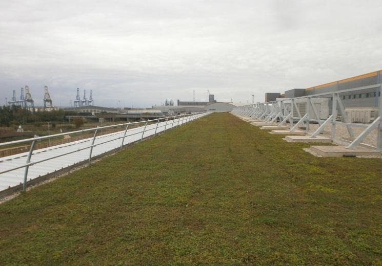 Sedum mat installation on the Amazon fulfilment centre in Tilbury, Essex, UK by Geogreen Solutions