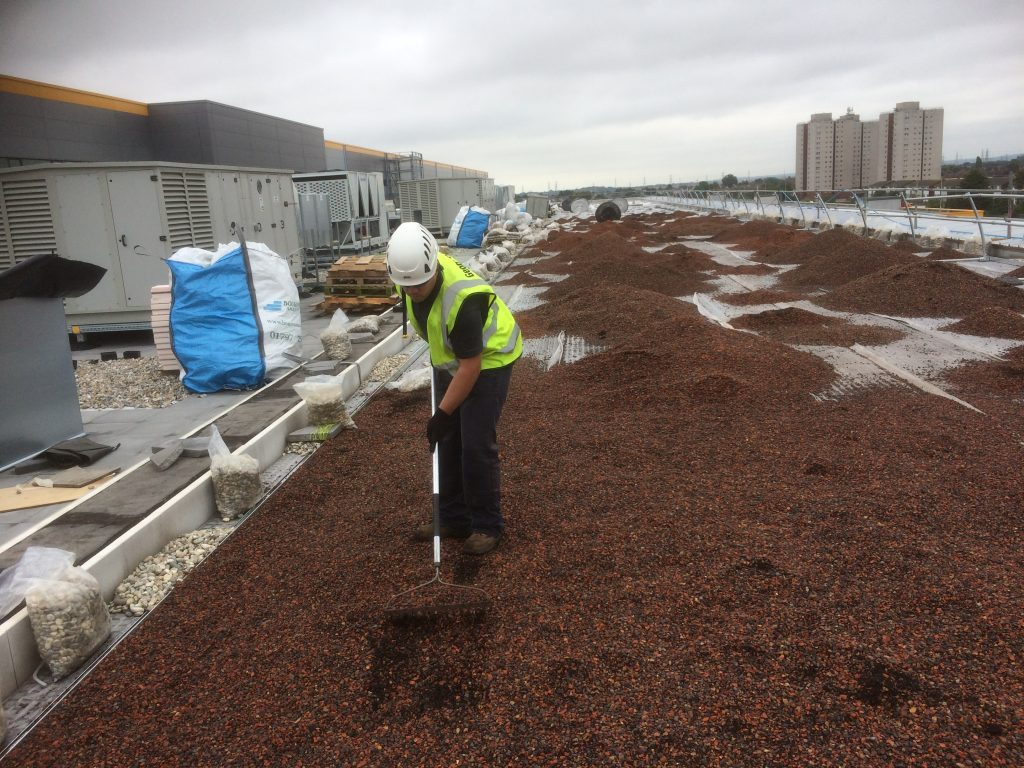 Geogreen installer spreading the green roof growing media